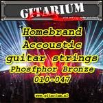 Gitarium huismerk Accoustic Phosfhor Bronze 010